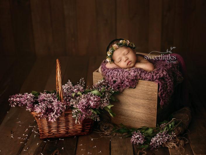 DSC 8363 copy 705x529 - Newborn