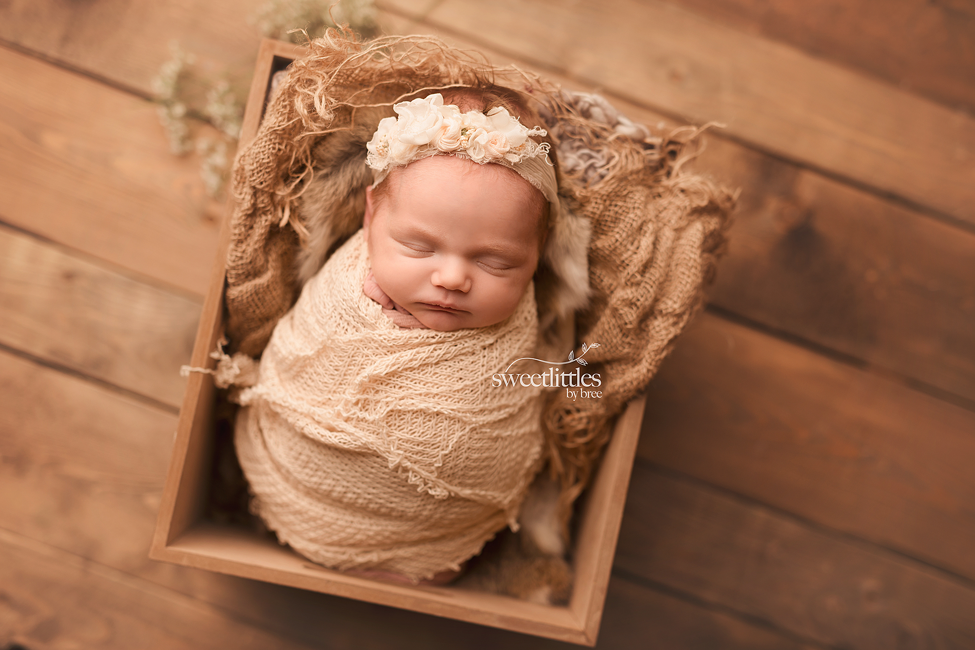 sweet littles small gallery 1 - Newborn Sessions